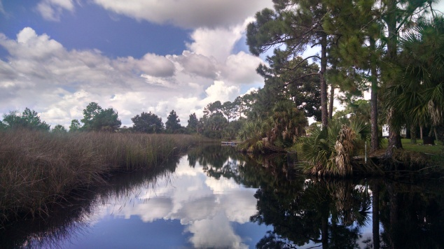 Suwannee canal in October